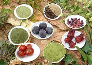 Australian Bush Food Products
